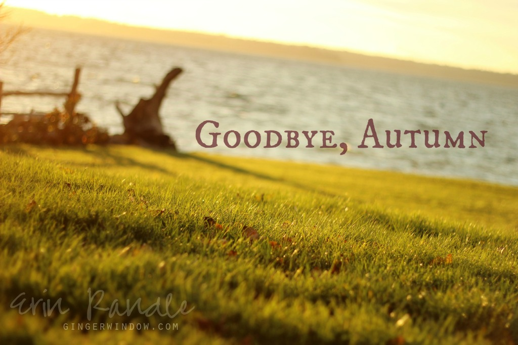 Goodbye, Autumn @ gingerwindow.com